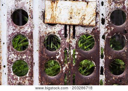 Rusty metal fence with empty name plate and summer garden. Rustic metal wicket of abandoned house. Greenery behind fence. Backyard door. Locked door of abandoned place. Secret garden. Abstract photo