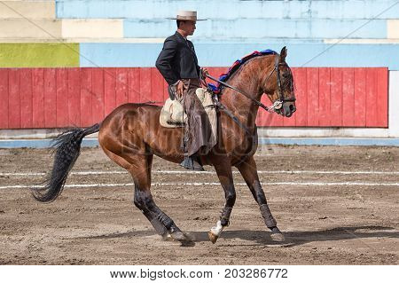 June 18 2017 Pujili Ecuador: bullfighter on horseback is getting ready for the ritual fight in the arena