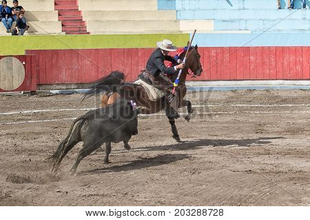 June 18 2017 Pujili Ecuador: bullfighter on horseback is chased by the bull during the ritual fight in the arena