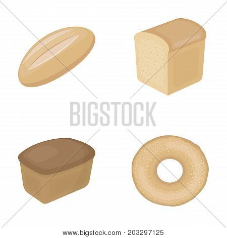Loaf cut, bagel, rectangular dark, half a loaf.Bread set collection icons in cartoon style vector symbol stock illustration .
