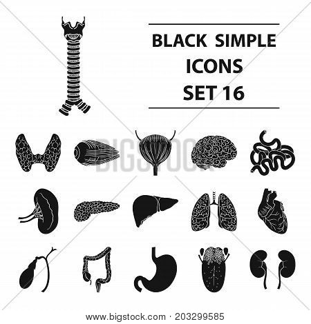 Human organs set icons in black design. Big collection of human organs vector symbol stock illustration