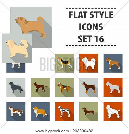 Dog breeds set icons in flat style. Big collection dog breeds vector symbol stock