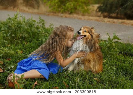 Cute little girl with a dog Sheltie breed. Best friends forever. Dog devotion. Girl cuddles up to a pet in the park