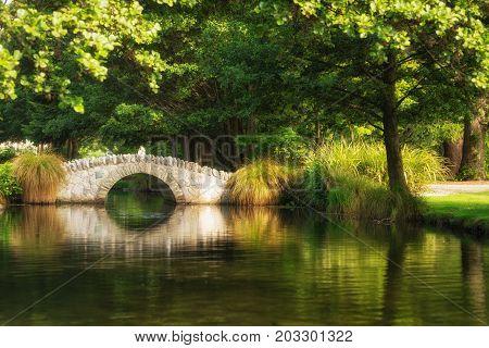 Beautiful Bridge In Botanical Garden