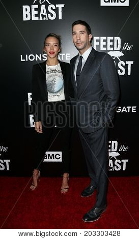 NEW YORK - MAY 23: Zoe Buckman (L) and David Schwimmer attend the AMC's 'Feed The Beast' premiere on May 23, 2016 in New York City.