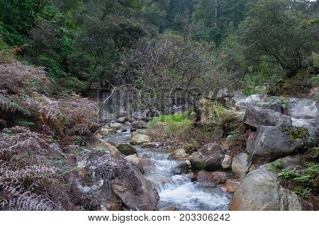 Small mountain river beautiful greenery landscape Ciwidey Bandung Indonesia