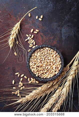 Wheat grains and spikelets on rusty background. Top view, space for text