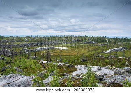The Amphitheater In The Nature Reserve Of Mount Vottovaara, Karelia.