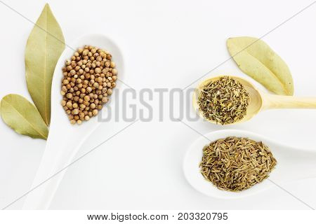 Various spices oregano, coriander seeds, bay leaves and cumin seeds