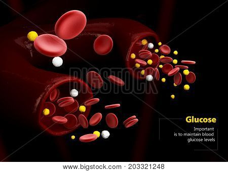 3D Illustration Of Blood Glucose Level. Normal Level, Hyperglycemia And Hypoglycemia. Blood Vessels