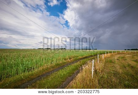 Storm over the green fields. rural scene