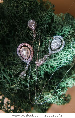 Earrings made of silver or white gold lie on the moss. White gems