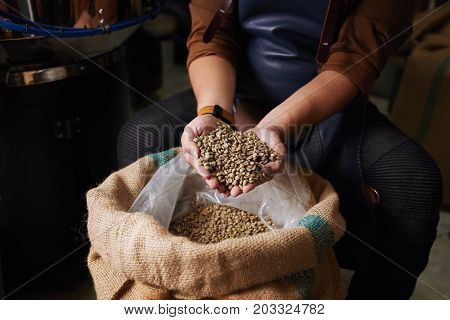 Hands of man showing sack full of green coffee beans