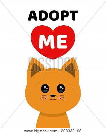 Vector flat cartoon illustration icon design.Adopt me. Dont buy. Cat Pet adoption.  kitty cat looking up to red heart.Help homeless animal concept. Isolated on white background