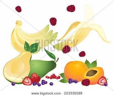 an illustration of super fruits for healthy eating on a white background