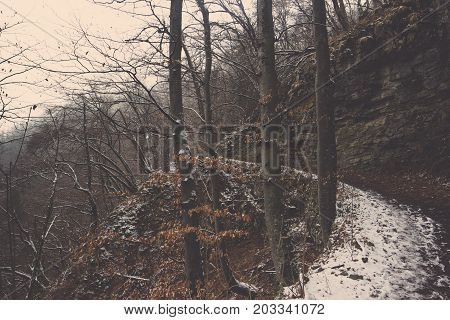 Landscape of curve pathway covered in snow to turning left with cliff and trees in winter season at Bled, Frozen trail sidewalk around mountain with foothills and precipice covered by brown grasses and trees in Slovenia