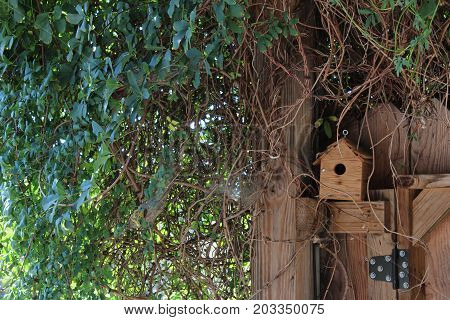 Birdhouse in a nook of a fence, horizontal aspect