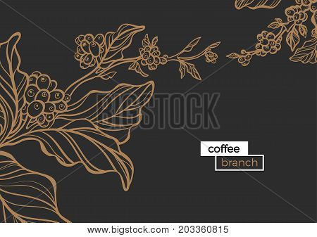 Template of golden branch of coffee tree with leaves and natural coffee beans. Organic product. Silhouette art line. Botanical illustration. Vector isolated on black background eps.10