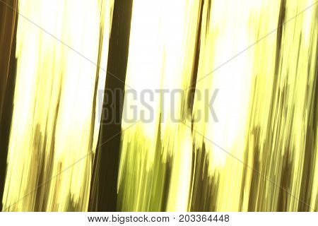 yellow abstract background with elements of white and with blurred patterns