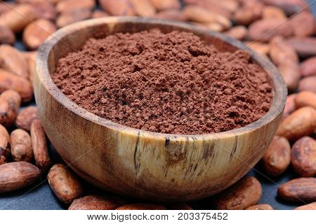 Many cacao beans with powder in a bowl on slate close-up