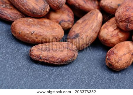 Group of cacao beans on slate close-up