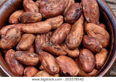 Cacao beans in a bowl close up