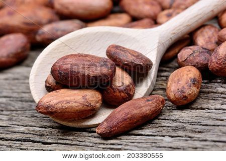 Cacao beans in a wooden spoon on rustic table