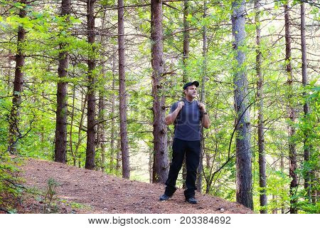 A man crosses the path in the forest of wild pines. Hiking clothing cap with visor and backpack.