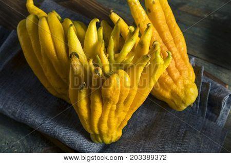 Yellow Organic Buddhas Hand Citrus