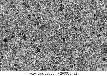 a full frame sprayed metallic varnish micrograph