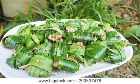 Chicken wrapped pandan raw for fried of Thai food Blur background is pandan tree plant Nature concept idea of green to save world has a copy space.