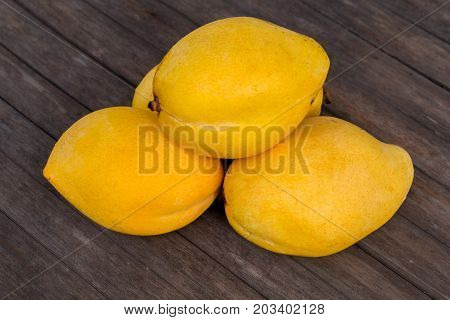 Whole yellow mango on wooden background. Bunch of tropical fruits. Oval yellow mango pile. Sweet dessert or vegetarian food. Exotic mango closeup photo. Ripe exotic fruit mango. Delicious juicy fruit