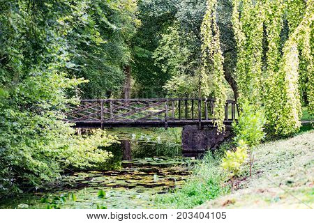 COUNTY OFFALY, IRELAND - AUGUST 23, 2017: View of Birr Castle Gardens in County Offaly, Ireland