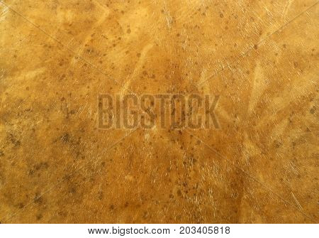 Background: yellow textured surface of deerskin leather with hairs and natural patterns