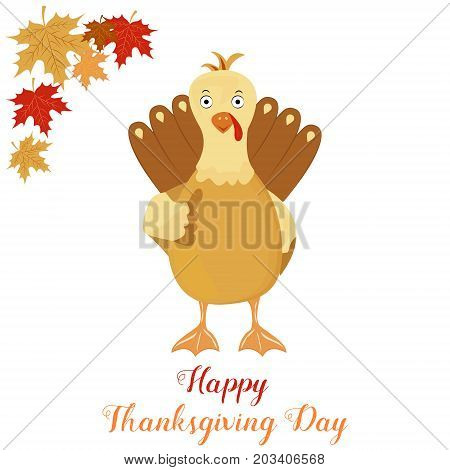 Thanksgiving funny turkey on a white background