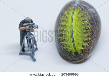 Miniature doll cameraman and green caterpillar. Videographer at work shooting tropical animal. Cameraman figurine. Filmmaking concept. Tropical nature studio shot. Exotic insect in camera. Green slug