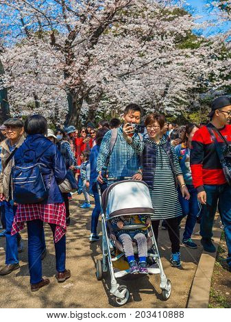 HAKONE, JAPAN - JULY 02, 2017: Unidentified people in a park and enjoying the view in hanami park during cherry blossom season in Kyoto, Japan.
