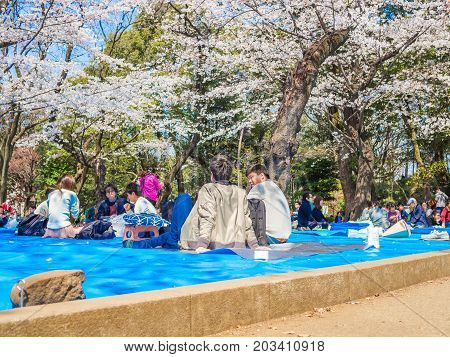 HAKONE, JAPAN - JULY 02, 2017: Unidentified people sitting in a park and enjoying the view in hanami park during cherry blossom season in Kyoto.