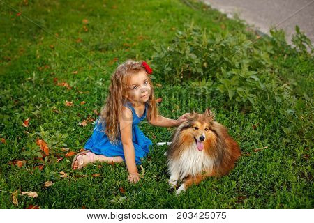 Cute little girl with a dog Sheltie breed. Best friends forever. Dog devotion. Girl and domestic pet sitting on the lawn in the park