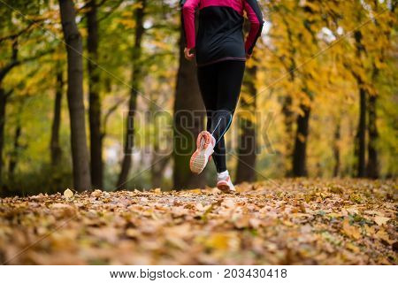 Rear shot a fitness woman jogging in an autumn park