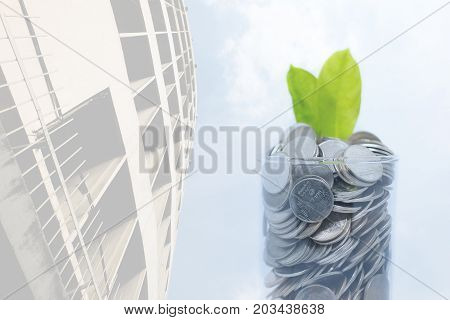 Saving money for your investment future (habit) is similar to growing green leaves on tree isolated on skyscraper building and blue sky with cloud background - saving & economical concept.