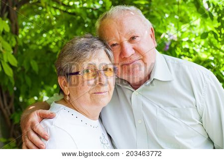 Happy elderly couple in love hugging in the park on a summer day