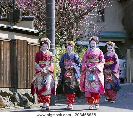 JAPAN, KYOTO, APRIL, 05, 2017 - Four nice woman in Maiko kimono dress at old-fashioned town of Gion district against the background of cherry blossoms, Kyoto Japan.