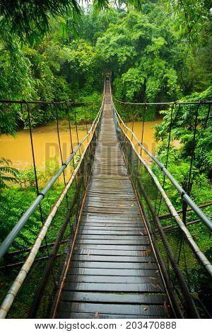 Vertical View Of A Suspension Bridge In The Jungle Near Chiang Mai