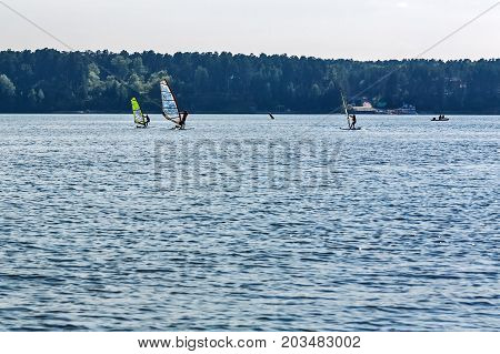 The river Berd BerdskNovosibirsk oblast Siberia Russia - August 2 2017: the sailing Board on the river in the Gulf of Berdsk