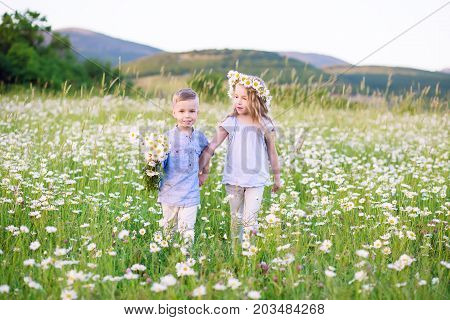 Beautiful little girl hugging a little boy in a field of chamomiles on a summer day