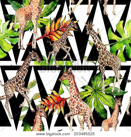 Exotic giraffe wild animal pattern in a watercolor style. Full name of the animal: camelopard. Aquarelle wild animal for background, texture, wrapper pattern or tattoo.