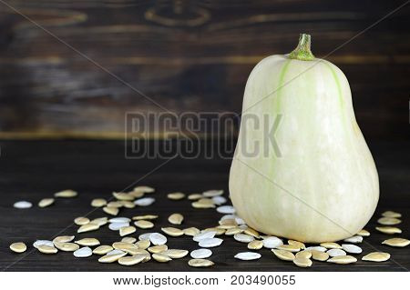 Close up of butternut pumpkin on dark wooden background