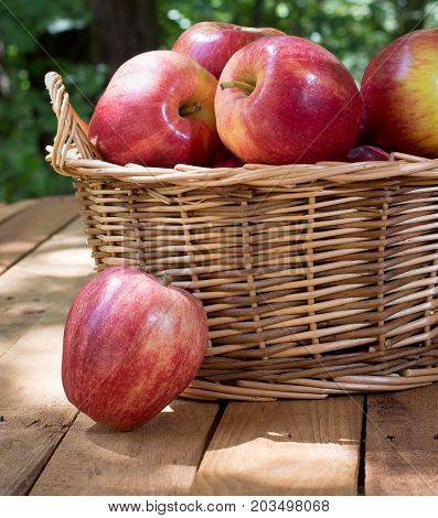 Basket of red apples with one on a wood surface
