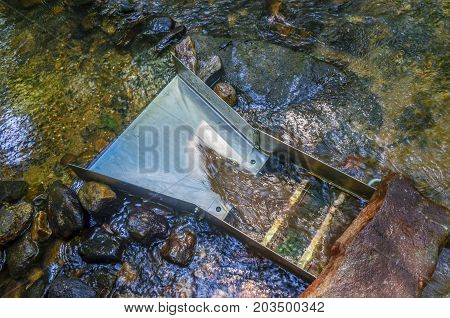 Gold panning and prospecting using sluice box. Sluice box has mineral rich soil flowing through along with river water. Fun and adventure in outdoor activity of gold panning and gemstone mining.